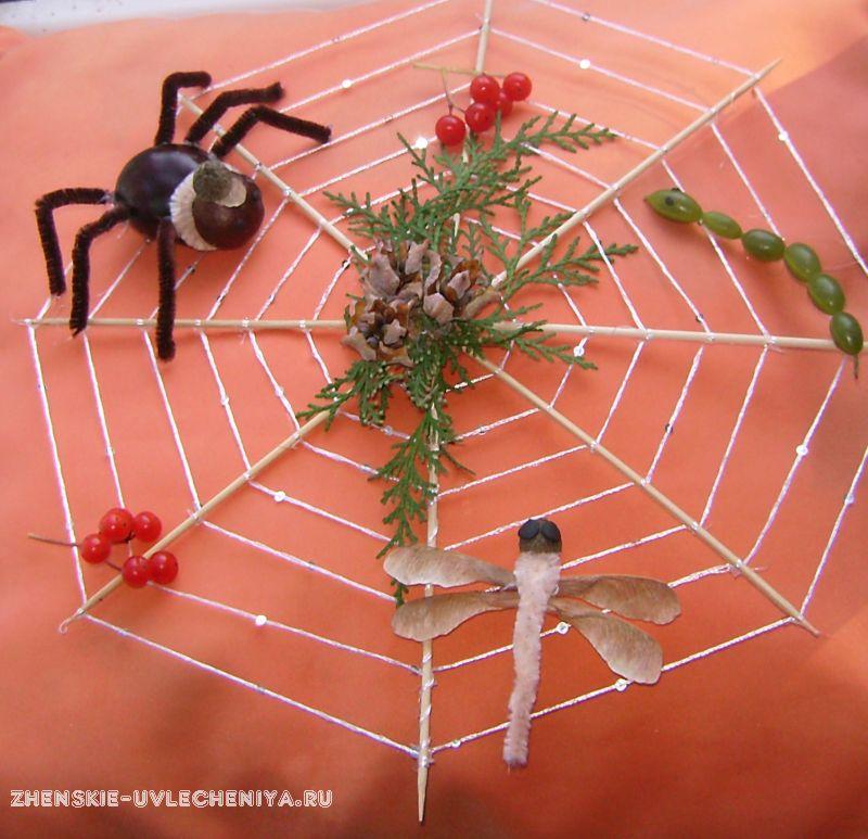Из чего сделать паука из природных материалов своими руками